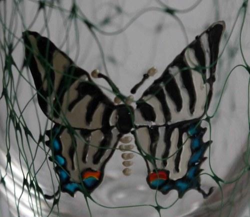 Sklenice- motýlice