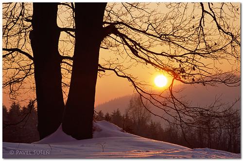 Zimní ráno