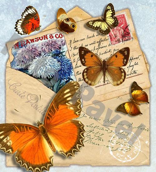 Vintage motiv - obálka s motýlky a květinou