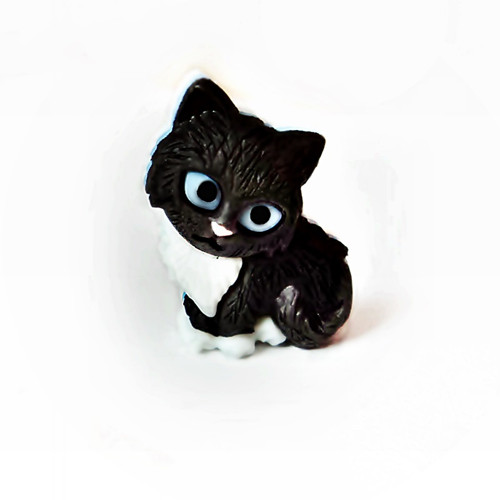 KNOFLÍK kotě černé modroočko