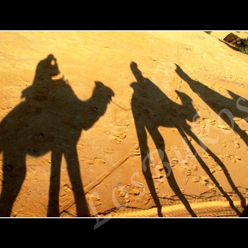Stínohra na poušti
