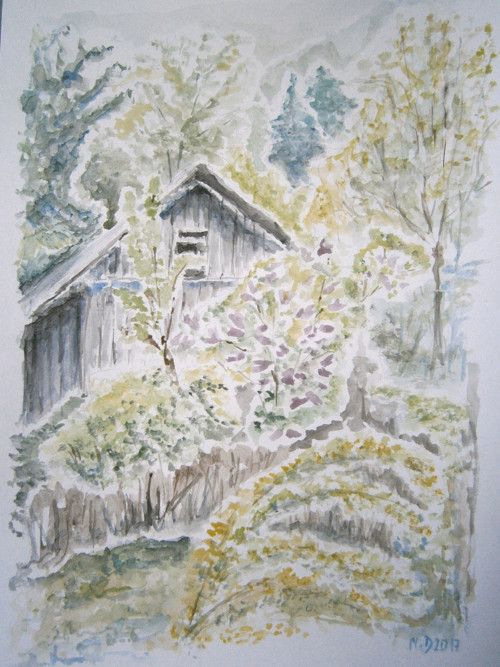 Jarní pučení v lese