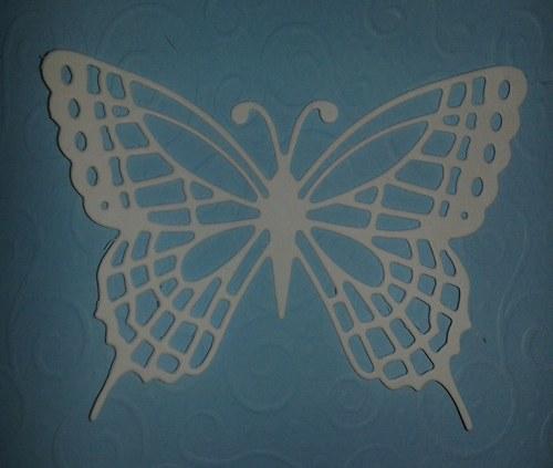 Motýl velký - bílý