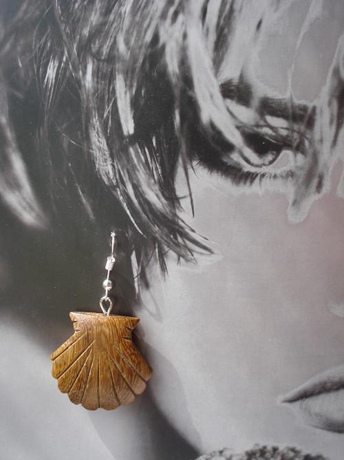 Náušnice - mušle hrebenatky drevené