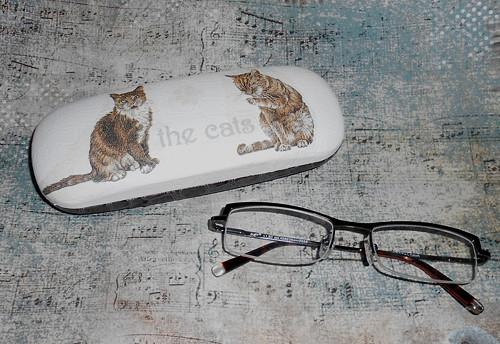 Pouzdro na brýle - kočičí