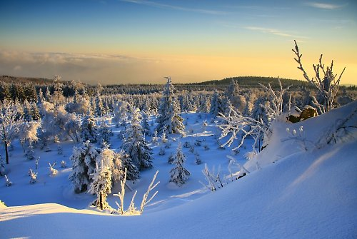Zima a Meluzína