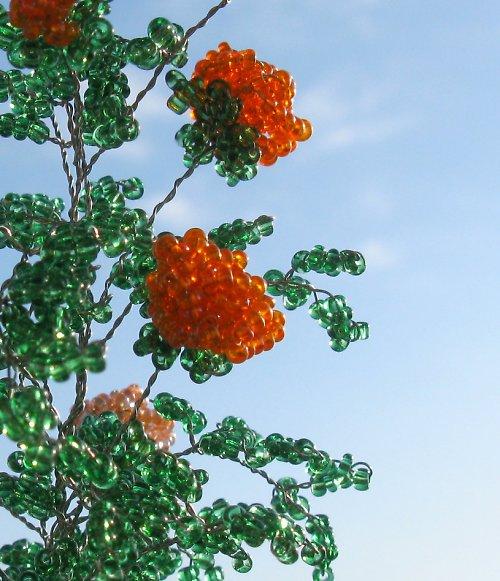 Korálkové růže v odstínech oranžové