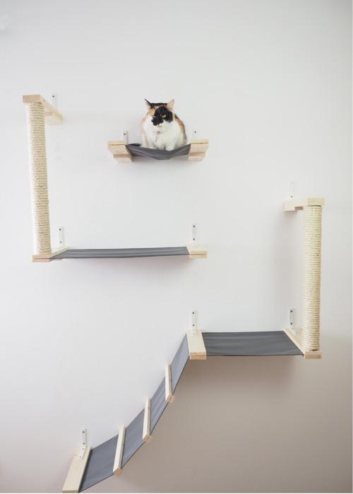Kočičí prolézačka CATTISH TOWERS