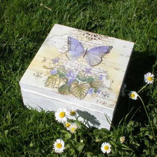 Motýl a fialky