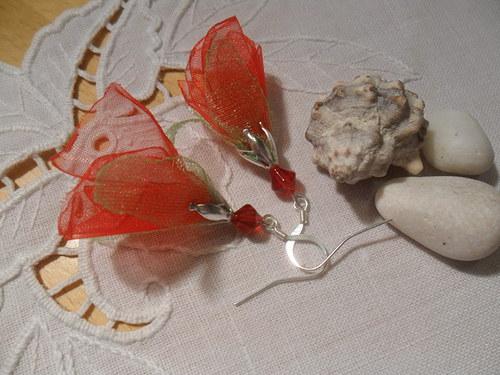Ohnivé květy střapačky