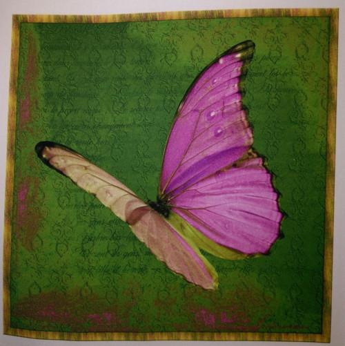 bavlněná látka - panel 25,5 x 25,5 cm