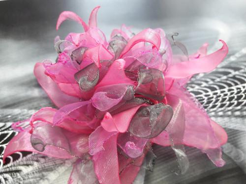 Astra  růžová- brož