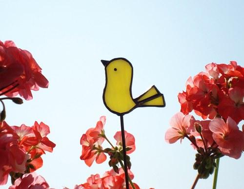 Ptáček do květináče