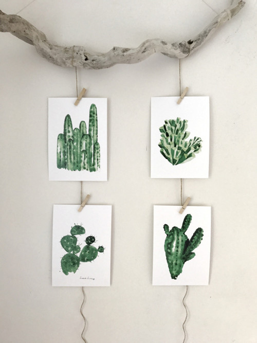 Kaktusy a sukulenty -sada 4ks A5