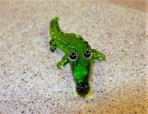 krokodýl ležící