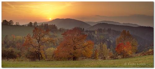 Poslední podzimní