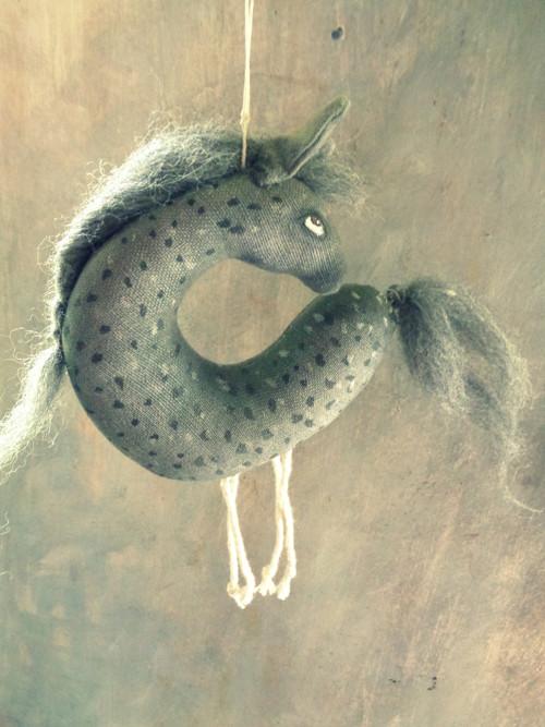 koník šedý