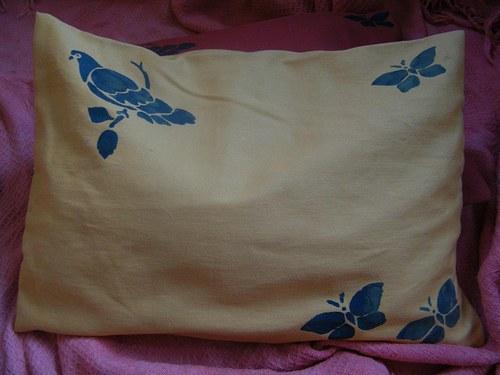 Pohankový polštářek bez tisku 25x30