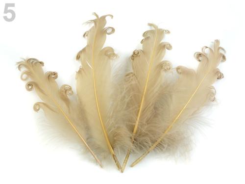 Husí peří kudrnaté délka 15-18 cm - béžová tm(4ks)