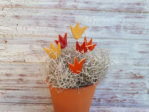 Tuli,tulipánek - zápich