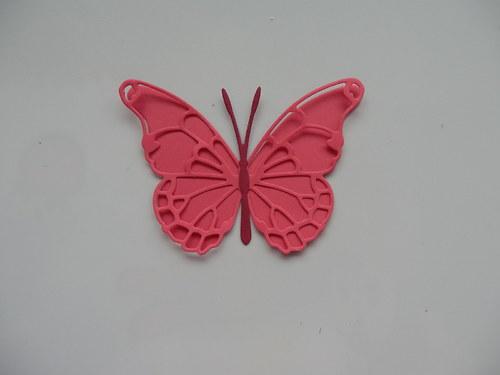výsek -  motýl malý