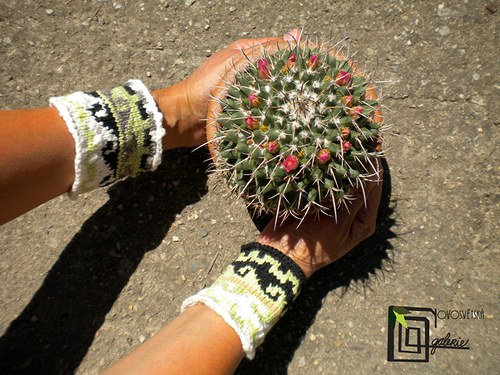 El loto (náramek) 5