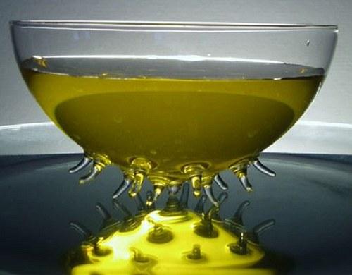 CHOBOTNICE-MISKA nebo KRYT  menší na sýry,....
