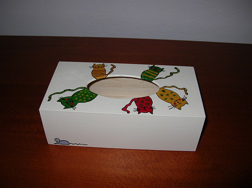 Krabička na kapesníky- kočičková