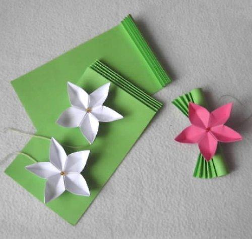 Květ sakury - darování peněz