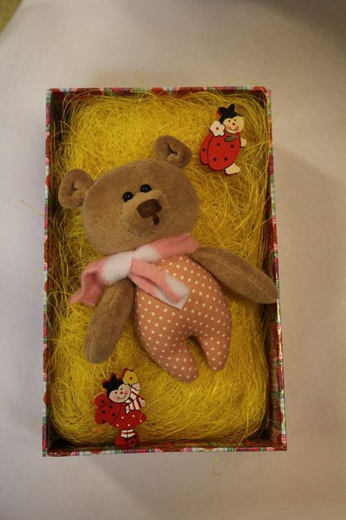 Medvidek v taštičce