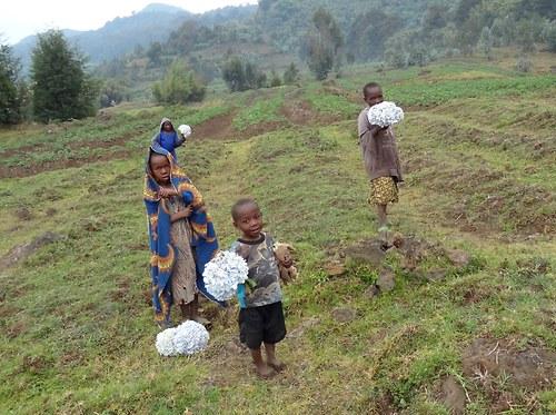 Děti pastevců