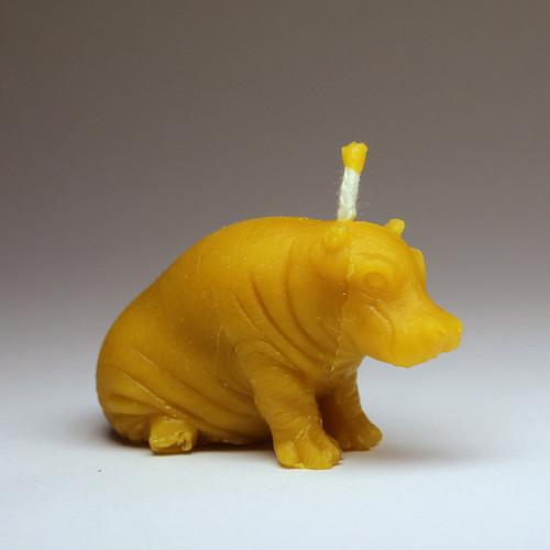 Svíčka ze včelího vosku - hroch