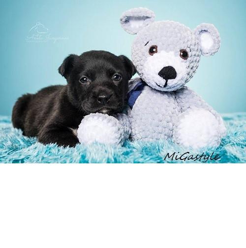 Háčkovaná hračka - medvídek