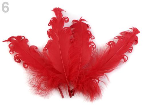 Husí peří kudrnaté délka 15-18 cm - červená (4ks)