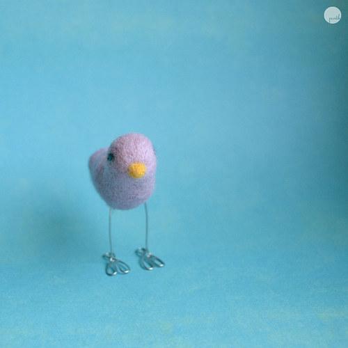 Růžový ptáček zpěváček