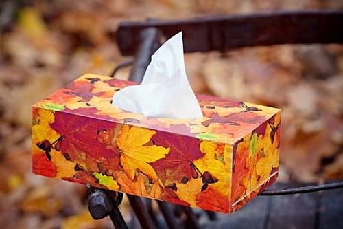 krabička na kapesníky-podzimní listí