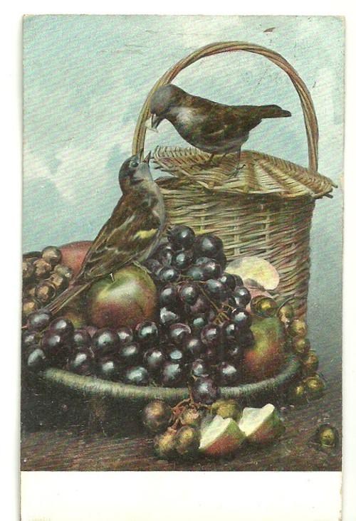 Umělecká pohlednice s vyobrazeným zátiším