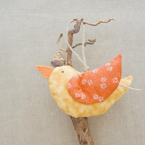 jarní pípáček oranžový