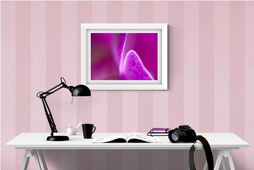 Fialová orchidej fotografie 30x20