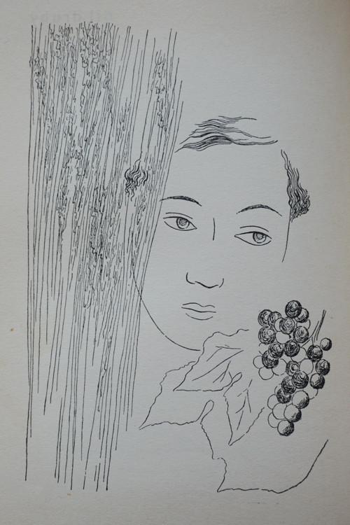 J. Kopta, Červená hvězda (ilustrace Toyen)
