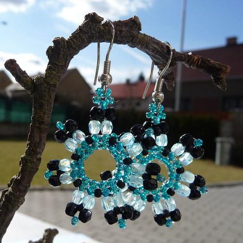 Modročerná sluníčka
