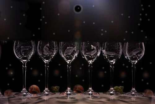 6x sklenice na víno 250 ml-motiv sladkovodních ryb