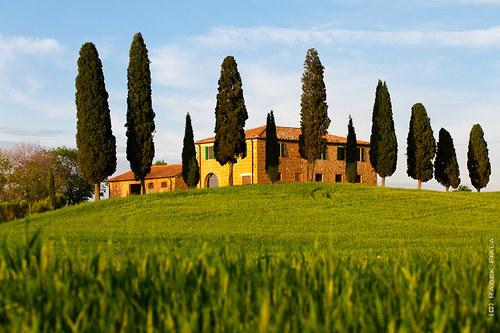 Toscana classico