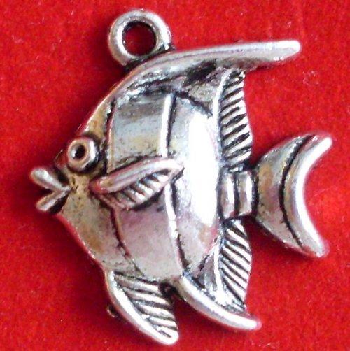 Stříbrná rybka