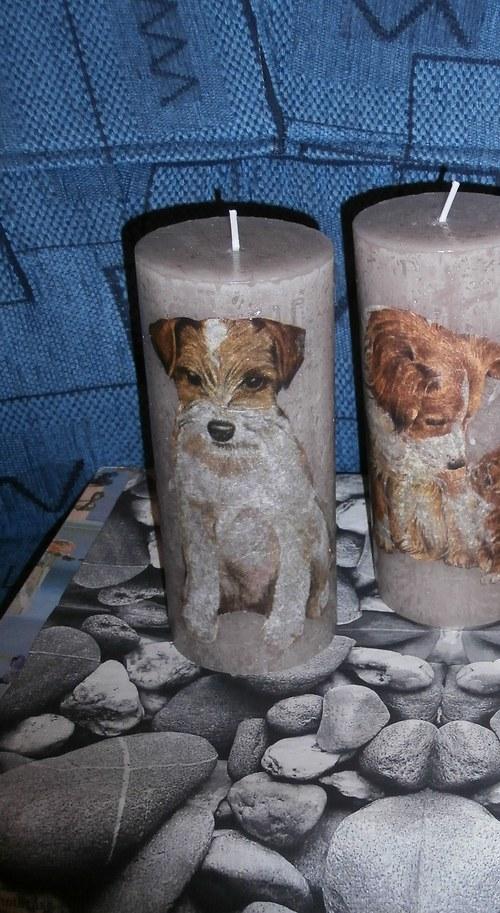 Svíčka Pejsek