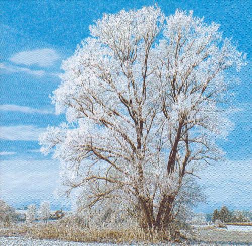 Ubrousek - strom