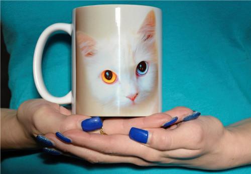 hrnek motiv kočka1