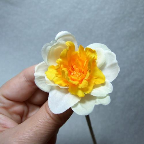 Narcis plnokvětý