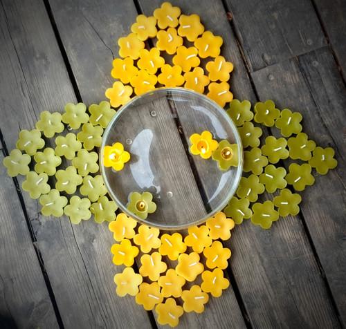 Plovoucí květinka zelená