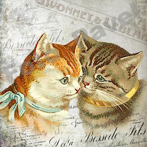 Vintage motiv - dvě koťata 3